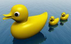 Bolsa: lugar de patos?